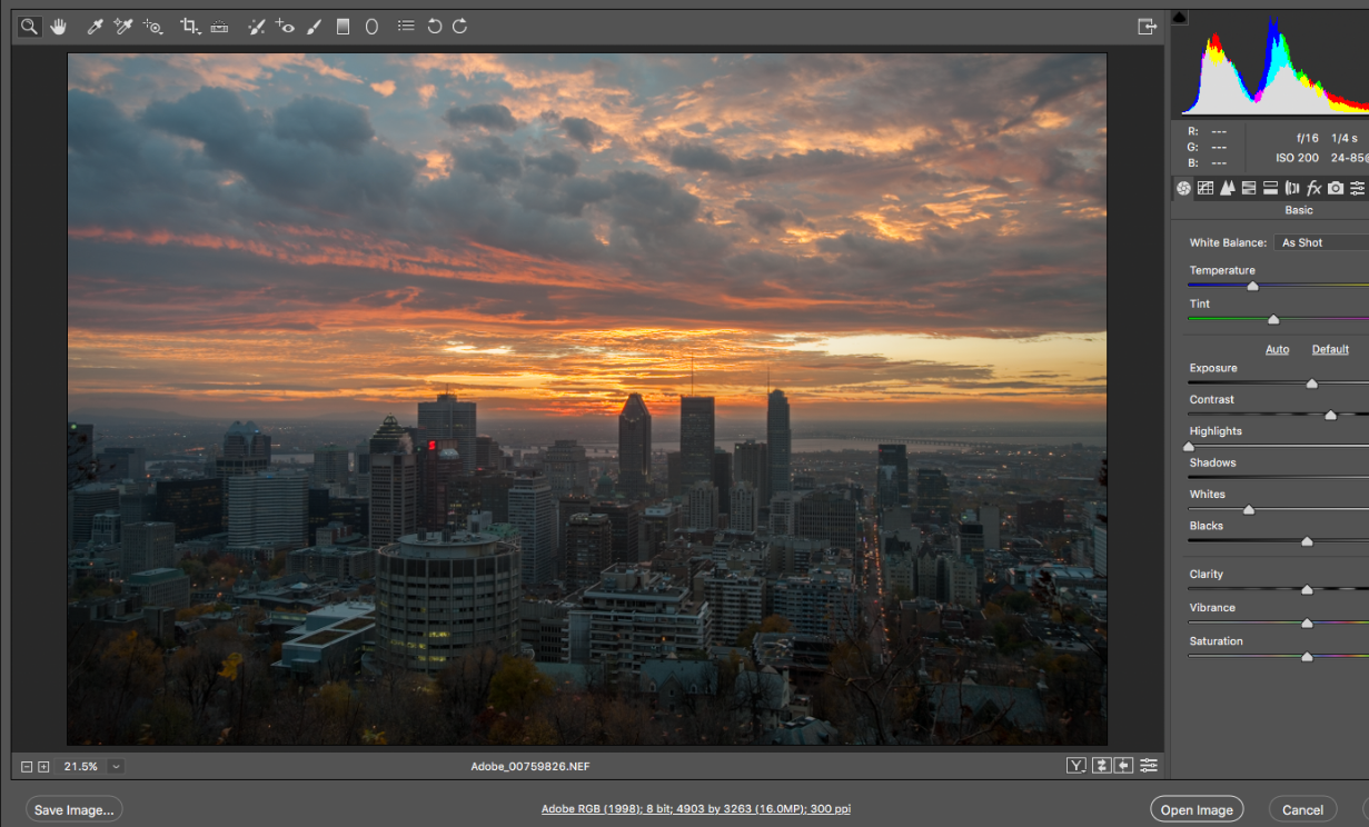 Adobe Camera Raw mac