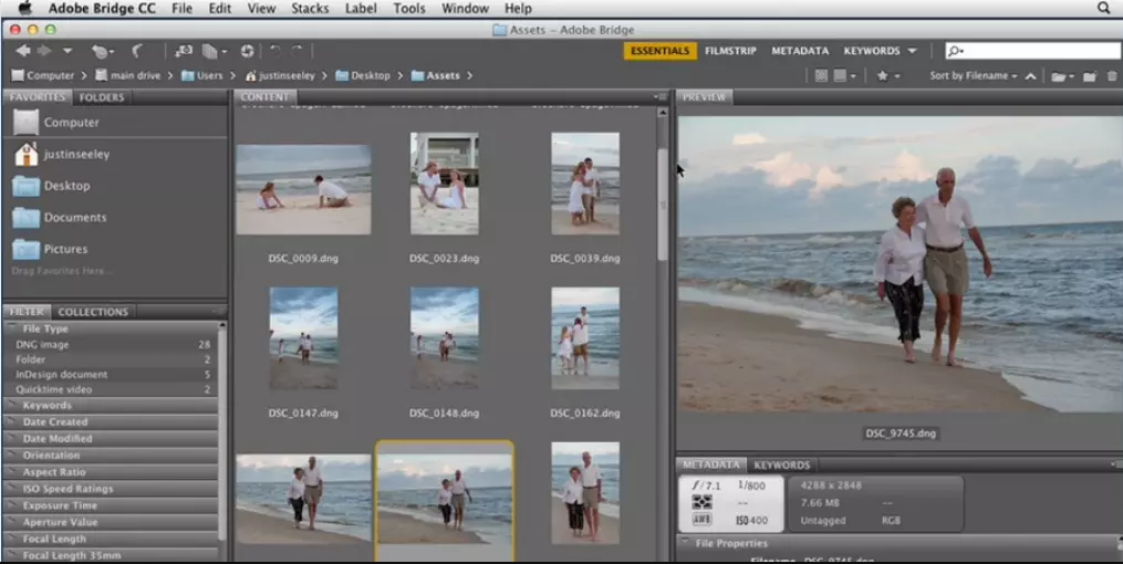 Adobe Bridge CC windows
