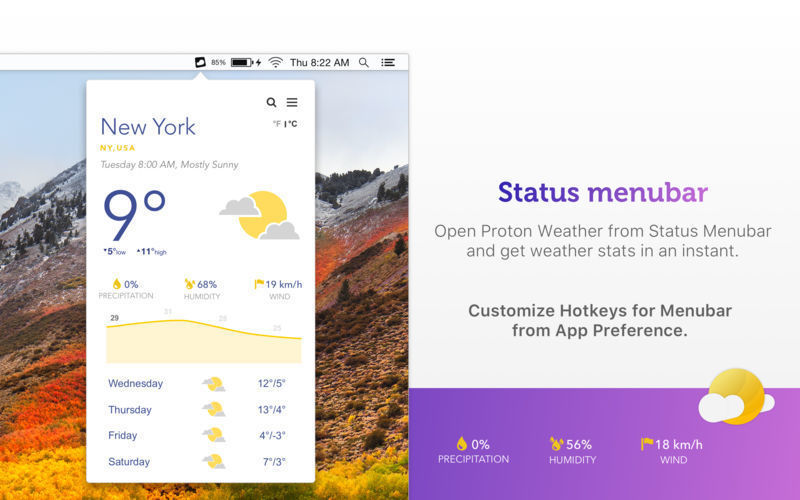 Proton Weather windows