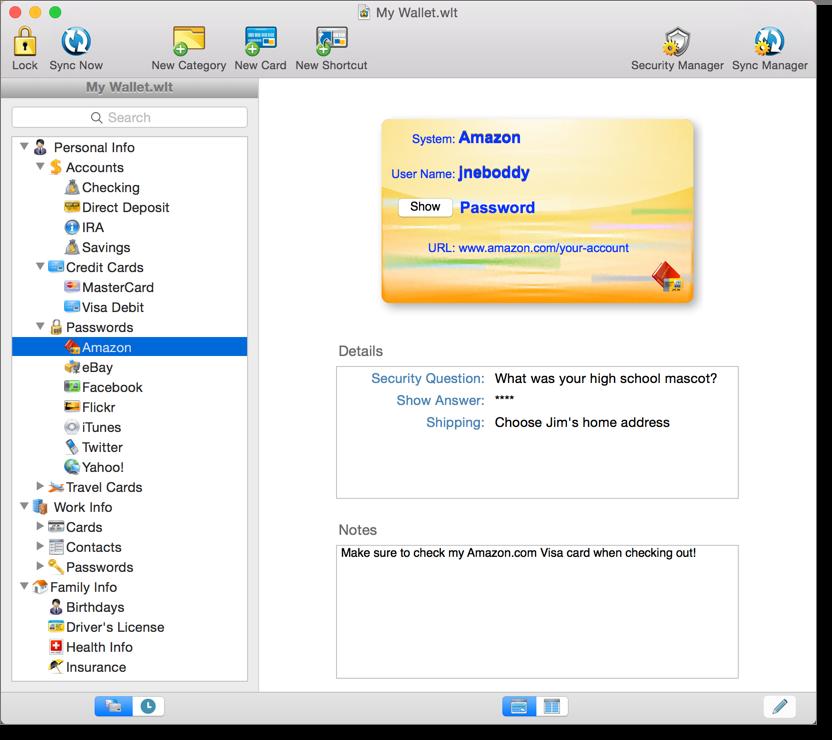 iliumsoft eWallet windows