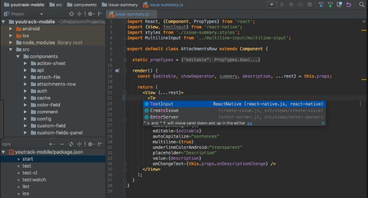 JetBrains RubyMine windows